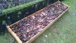 Das Beet haben wir mit Laub abgedeckt unter anderem als Schutz gegen Frost