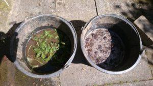 Brennnesseln und Kompost - fast schon Jauche