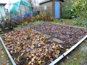 Ein Beet im Winter mit Laub und Kompost