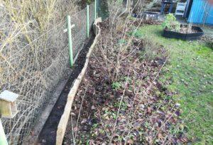 Steinplatten bilden eine Mauer hinter Beerenobststräuchern