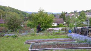 Letzte Gartenarbeiten vor der Zeit mit Baby