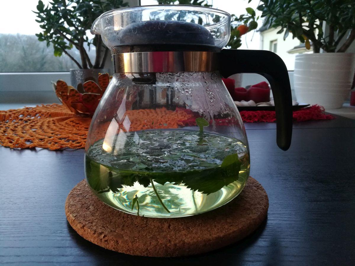 Grashopser-Tee