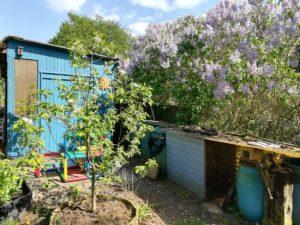 Wassertonnen im Garten