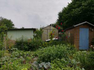 Garten ist Frieden